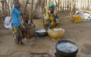 Réunion annuelle du Projet PHC Germaine de Staël. Région de Goundafa en Afrique de l'Ouest. © Vieugué. 2015