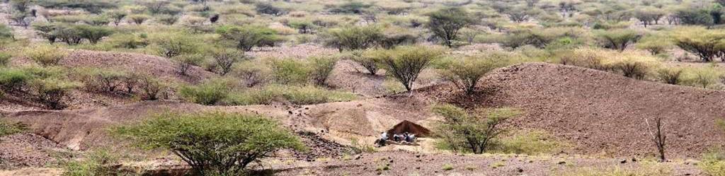 Paysage de fouille au Kenya © Harmand Lewis